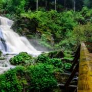 Triberger Wasserfälle - Hotel im Schwarzwald für Gruppenreisen