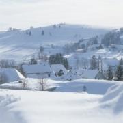 Winder Schwarzwald