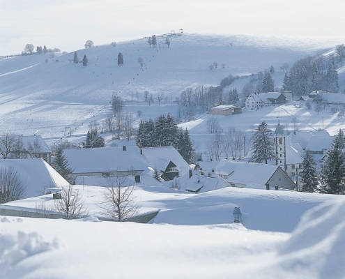 winterlandschaft schwarzwald 495x400 - Black Forest Hotel for Tour Groups