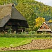vogtsbauernhoefe 180x180 - Schwarzwaldwoche - Hotel Lindenhof