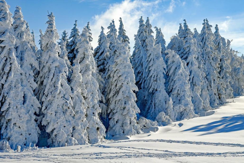 Winter Schwarzwald