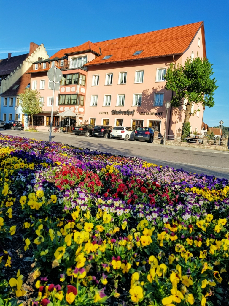 Blumen im Frühling Hotel Restaurant Lindenhof in Bräunlingen bei Donaueschingen