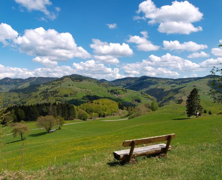 Frühling Schwarzwald 845x684 - Schwarzwaldwoche - Hotel Lindenhof