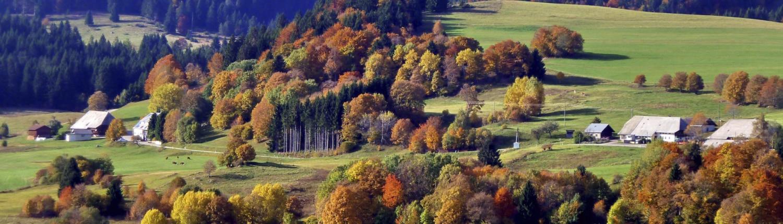 schoener Schwarzwald Herbst