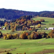 schoener schwarzwald.jpg 180x180 - Herbst im Schwarzwald