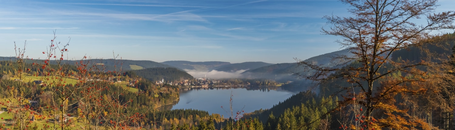 view to the lake titisee 1500x430 - Wellness im Schwarzwald - Hotel Lindenhof