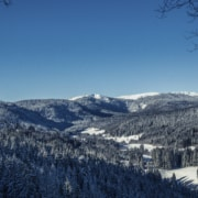 Winterscenery Black Forest