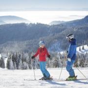 skier on feldberg mountain 180x180 - Winter im Schwarzwald - Hotel Lindenhof Donaueschingen