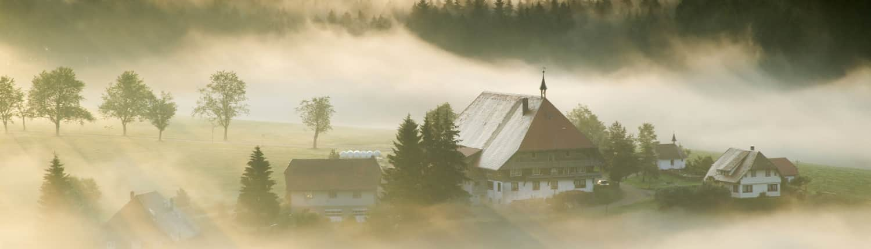 Schwarzwaldhöfe 1500x430 - Herbst im Schwarzwald
