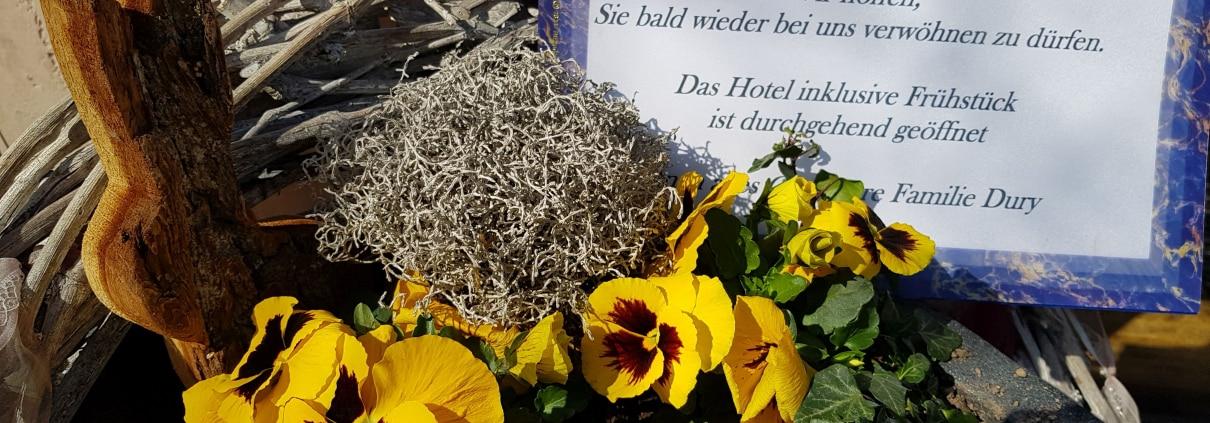 aktuelles 1210x423 - Aktuelles im Hotel Restaurant Lindenhof